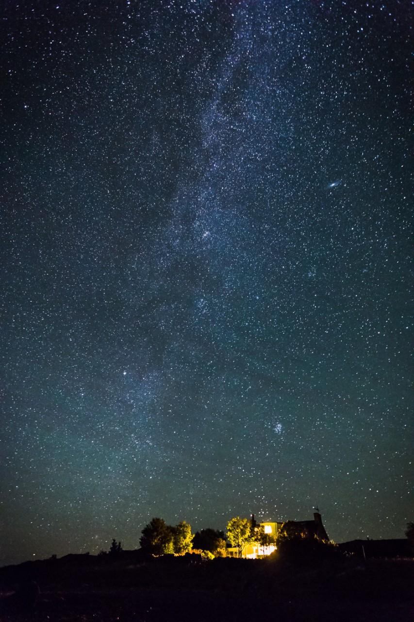 Fuchsia Stars mjgholland photography