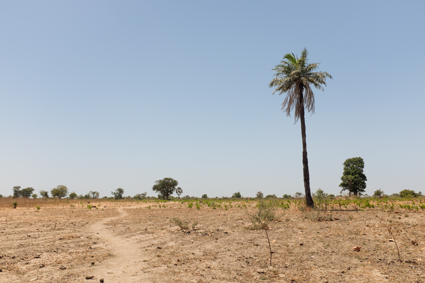 The Gambia-29